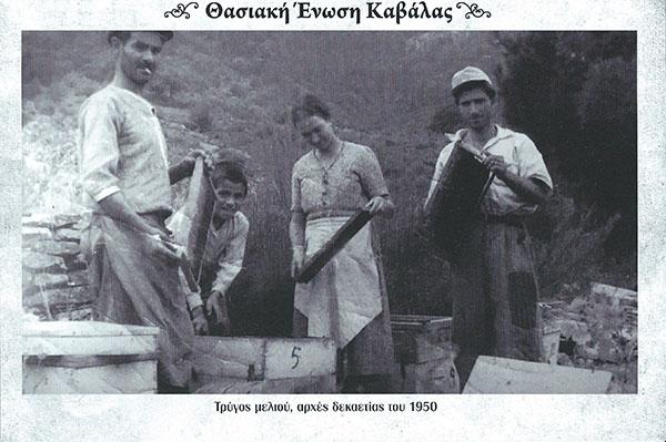 Τρύγος μελιού 1950